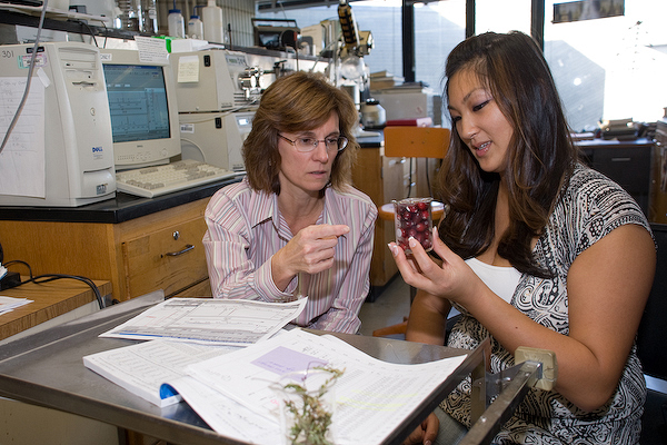 UMass Dartmouth Website photo with Chrissy Dao (right) and Dr. Catherine Neto (left)