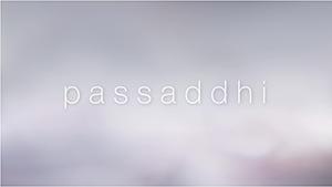 Passahddi visual music composition by Jing Wang and Harvey Goldman